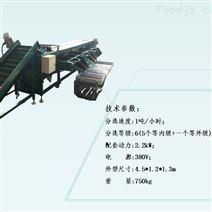 6XH-2型直徑選果價格 按直徑分選李子大小