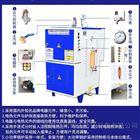 LDR蒸汽发生器立浦全自动小型屠宰场电蒸汽锅炉