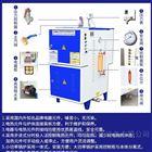 立浦热能LDR电蒸汽发生器