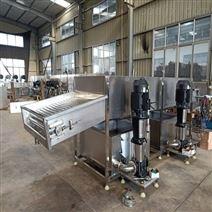 專業速凍玉米加工設備