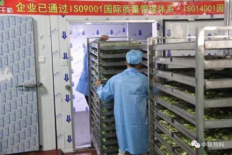 河南中联热科中药党参烘干设备