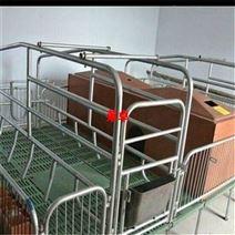 養豬設備廠 母豬產床 母豬分娩床 豬床
