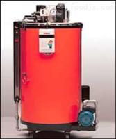 自动系统循环加热热水锅炉