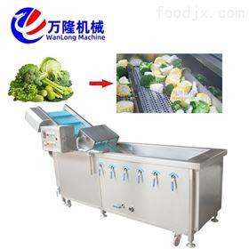 QB-25廠家定制款薔薇果清洗機洗菜機一人操作即可