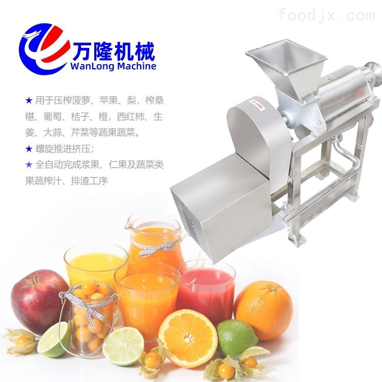 厂家现货 全自动梨子果蔬干榨机 榨汁机定制