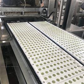 HQ-300反砂木糖醇糖果硬糖浇注生产线