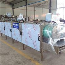 HG-10隧道式药材烘干机