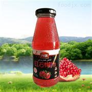 RCGF32-32-10石榴汁饮料生产线整套设备