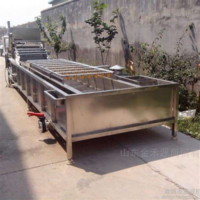 JHY3000蔬菜清洗机清洗流水线专业制造厂家金禾源