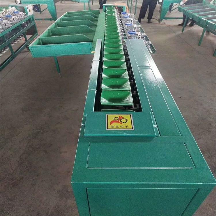 红薯马铃薯分重量的机器 地瓜分拣机