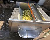 诸城俞洋食品机械有限公司