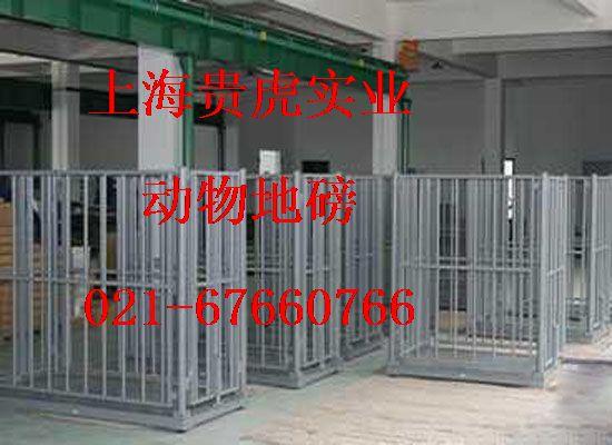 1000公斤电子动物秤,牲畜电子称
