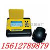 BJDW-1型<br>钢筋保护层厚度检测仪 价格