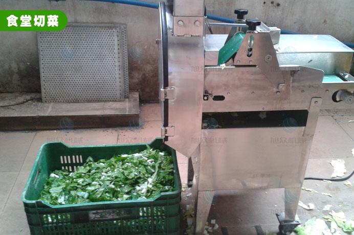 XZ-681多功能切菜机切小白菜,食堂切菜机