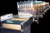 微波枣产品烘干灭菌设备
