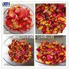 HK-GZ10玫瑰花低温干燥机